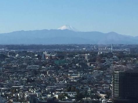 Carrot Tower Fuji