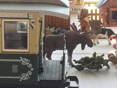 TIC Christmas moose