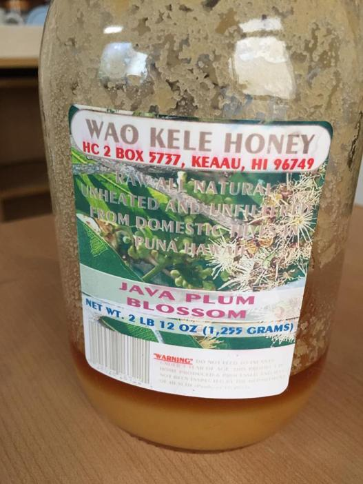 Java Plum Blossom honey